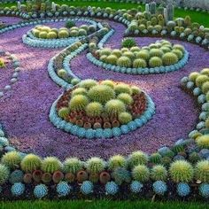 Isn't this an amazing example of the blending of color and form? The blue border creates the curves as it outlines the plantings. This would make a great fabric pattern! See how easy it is to get inspired?