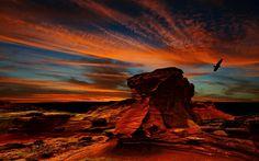 désert coucher de soleil - Recherche Google