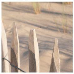Poster des photos des vacances pour prolonger un peu l'été...🐚 il fait tout gris ici ☁️ . . . . . #holidaysouvenirs #switzerland #capferret #sea #coquillagesetcrustacés🦀 #lesoleilestdanslatete Cap Ferret, Photos, Instagram, Grey, Vacation, Pictures, Photographs, Cake Smash Pictures