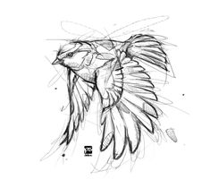 Ideas for bird sketch tattoo draw are in the right place about bird illustration Here we offer you the most beautiful pictures about the small bird you are looking for. When you examine the Ideas for bird sketch tattoo draw Tattoo Sketches, Tattoo Drawings, Drawing Sketches, Drawing Drawing, Drawing Tips, Drawing Ideas, Tattoo Ink, Sketching, Sketch Ideas