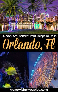 Looking for the best things to do in Orlando that aren't amusement parks? We've got you covered! From parks and water sports to wildlife and day trips, there's tons of fun to be had in Orlando. Which of these things to do in Orlando will you do first? #orlando #usatravel #thingstodoinorlando #orlandowithkids #familytravel #florida #floridatravel Florida Vacation, Florida Travel, Florida Beaches, Travel Usa, Travel Tips, Amusement Parks In Florida, Stuff To Do, Things To Do, Family Travel