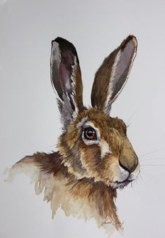 """This is an original ink and watercolour of a hare . It is painted on my favourite """"St Cuthbert's Mill """"watercolour paper, which measures by 310 mm. There is no better way to… Watercolor Paintings Of Animals, Animal Paintings, Watercolor Art, Bunny Drawing, Bunny Art, Cool Art Drawings, Animal Drawings, Hare Pictures, Hare Illustration"""