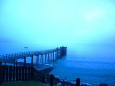 Fog on Hokianga Harbour early morning