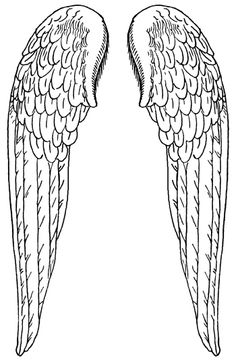 Large Angel Wings :: Angel Wings - Image to my tattoo and get the show on the road Colouring Pages, Coloring Books, Vintage Illustration, Angel Crafts, Angels Among Us, Angel Art, Line Drawing, Ikon, Stencils