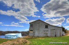 Harry's Harbour Iceberg, Newfoundland, Canada <3