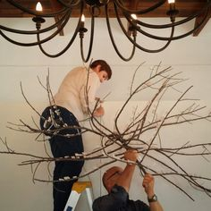 "Setting up the huge ""Tree City"" by Sarah Pratt with Zelda Hamilton and JP Meyer. Sarah Pratt, Hamilton, Zelda, City, Home Decor, Decoration Home, Room Decor, Cities, Home Interior Design"