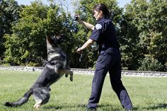 women police officers Canine Unit