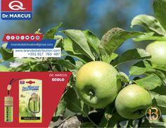 Já conhece os nossos ambientares para automóveis da Dr. Marcus❓Espreite o nosso site ❗️ Encomende já : 📍brandsdistribuiton@gmail.com 📍Preços especiais para revendedores Distribuidor para: Portugal , Nigeria , Marrocos , Mozambique, angola , Ghana , Argélia 📱 : 917763487 Ghana, Portugal, Apple, Fruit, Morocco, Getting To Know, Apple Fruit, Apples
