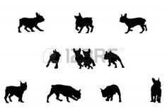 tattoo french bulldog - Google zoeken