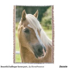 Beautiful haflinger horse portrait throw blanket Haflinger Horse, Horse Portrait, Ipad Air Case, Photo Memories, Horse Riding, Family Photos, Horses, Throw Blankets, Beautiful