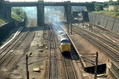All Alone Am I - Class 55 Electric Locomotive, Diesel Locomotive, Finsbury Park, Over The Bridge, British Rail, Steam Engine, Diesel Engine, Horse Racing, Railroad Tracks