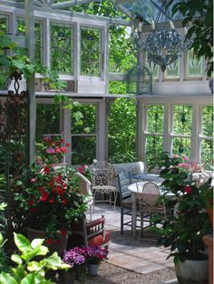 Windows in Conservatory - Outdoor Room, The Foxglove Spires Gardens at Tilba Tilba, South Wales, Australia