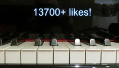 Likes Facebook, Music Instruments, Finding Nemo, Lisbon, Buen Dia, Pianos, Vows, Musical Instruments