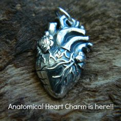 Our slightly creepy but very trendy and much in demand anatomical heart is finally in stock! Purchase at http://www.ninadesigns.com/bali_bead_shop/sterling_silver_anatomical_heart_charm/a1164/details
