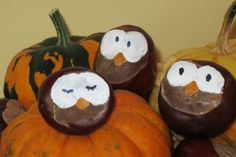 Making owls with chestnuts> The portal for young families> myfamily . - Kastanien basteln - Welcome Crafts Cheap Fall Crafts For Kids, Easy Fall Crafts, Halloween Crafts For Kids, Diy For Kids, Kids Crafts, Halloween Decorations, Diy And Crafts, Conkers Craft, Manualidades Halloween