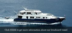 Our liveaboard vessel, visiting the best spots in the Andaman Sea and Eastern Borneo http://freedom-divers.com