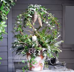 FANTASY GARDEN by Empty Vase A masterfully designed Mini Garden! Designed with Ivys, X-mass Ferns, Pine Cones and then accented with snowflakes.