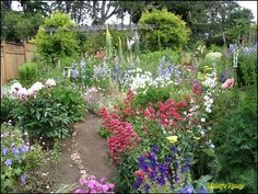 Pacific NW cottage garden. Inspiration for my yard.  I would love a garden like this one. Low maintenance and lots of pretty flowers.