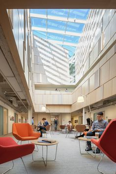 Gallery - Tozzer Anthropology Building / Kennedy & Violich Architecture - 2
