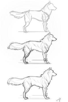 Fluffy Dog Step by Step by whisperpntr on DeviantArt