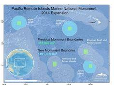 En bref : le plus vaste sanctuaire marin sera dans le Pacifique #APFrench #fle #fslchat