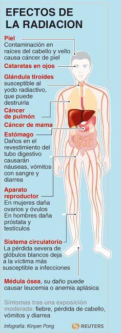 próstata y fiebre a los 37 opera
