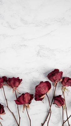 Iphone Wallpaper For Guys, Beste Iphone Wallpaper, Flower Iphone Wallpaper, Hd Phone Wallpapers, Disney Phone Wallpaper, Flower Background Wallpaper, Gold Wallpaper, Pretty Wallpapers, Aesthetic Iphone Wallpaper