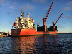 http://koopvaardij.blogspot.nl/2016/12/hollandse-ontmoeting_20.html  MAREN Bouwjaar 2007, imonummer 9384186, grt 5629 Eigenaar Maren Shipping Management B.V., Dordrecht