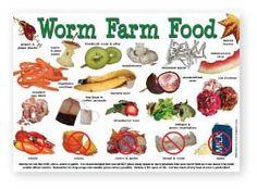 Worm Farm Foods