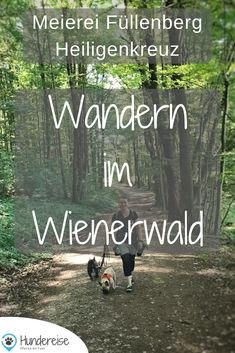 Dog Life, Austria, Hiking, Explore, Workout, World, Dogs, Fun, Movie Posters