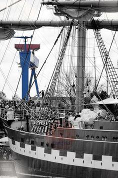 Hanse Sail mit Blick auf die Werft.