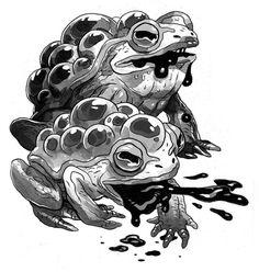 I did a ton of illustrations for the recent middle-grade novel, Scare Scape, by Sam Fisher. It's a really fun book that reminded me a lot of the stuff I would've been really into in late elementary. Creature Feature, Creature Design, Animal Sketches, Animal Drawings, Character Design References, Character Art, Frog Illustration, Fantasy Illustration, Creature Drawings