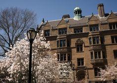 Edinburgh Uni fraternity spoke of 'raping trip' - Edinburgh Evening News