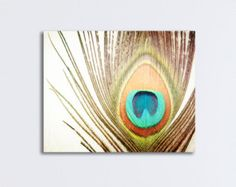 peacock feather wall art - Google Search