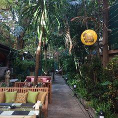 #LeanonTree #Restaurant #SukhumvitSoi18 #KhlongToei #MyKrungthep #Bangkok Hidden Treasures, Bangkok, Restaurant, Patio, Outdoor Decor, Home Decor, Decoration Home, Terrace, Room Decor