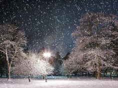 Evening snow....