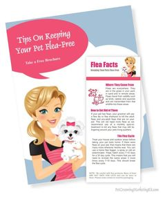Pet Report Card Templates For Dog Groomers Dog Grooming