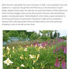 Alchemilla Mollis, Japanese Anemone, Purple Candles, Astilbe, Light Shades, Bloom, Garden, Plants, Garten