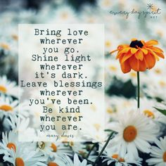 """Bring love wherever you go. Shine light wherever it's dark. Leave blessings wherever you've been. Be kind wherever you are."" Mary Davis"