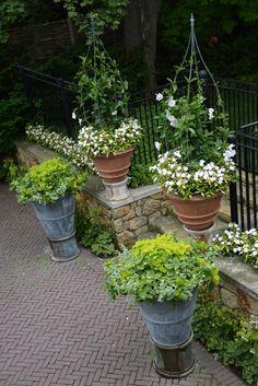 the driveway garden (6)