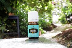 8 Ways to Use Fragonia Essential Oil - Lindsey Elmore