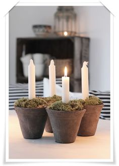 Weathered terra cotta pots and most were used to create this rustic Advent wreath.
