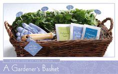 A Gardener's Basket Gift Idea