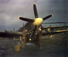 5-blade Spitfire