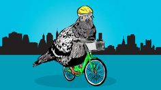 How To Ride A Bike In The City