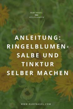 Ringelblume ist eine super Erste-Hilfe-Pflanze und gehört für mich in jede Hausapotheke.  Wie du dir eine Salbe und Tinktur selber herstellst und anwendest, erfährst du im Blogartikel.  #ringelblume #hausmittel #kräutersammeln #rubynagel Jamie Oliver, Super, Herbs, Knowledge, Remedies, Elderberry Recipes, Natural Life, Marigold Flower, Herb