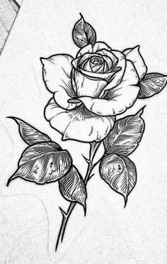 Rose tattoos, flower tattoos, new tattoos, body art tattoos, sleeve tattoos Pencil Art Drawings, Art Drawings Sketches, Cute Drawings, Rose Drawing Tattoo, Tattoo Drawings, Tattoo Sketch Art, Rose Tattoos, Body Art Tattoos, Flower Tattoos