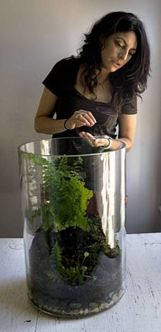 Monique Ramos is just one of the people who are now making terrariums. She makes them out of recycled glass, purchased soil, moss and plants, and creates her own mini-ecosystem in less than an hour. She gives her terrariums to friends as housewarming gifts in San Francisco, Calif., August 26, 2009. Photo: Frederic Larson, The Chronicle