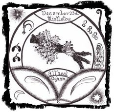 Mistletoe - All Heal Ogham letter  - none          Mistletoe Day - December 23rd  Powers:  Good Health,   Protection,  Fertility,   Luck in Hunting,  Exorcism.