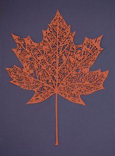 Sycamore Leaf Papercut :)